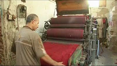 Wool production rises ahead of Eid al-Adha in Egypt