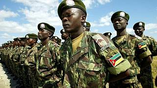 Mozambican army destroys rebel base
