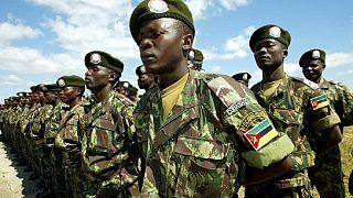 Mozambican army destroys rebel base