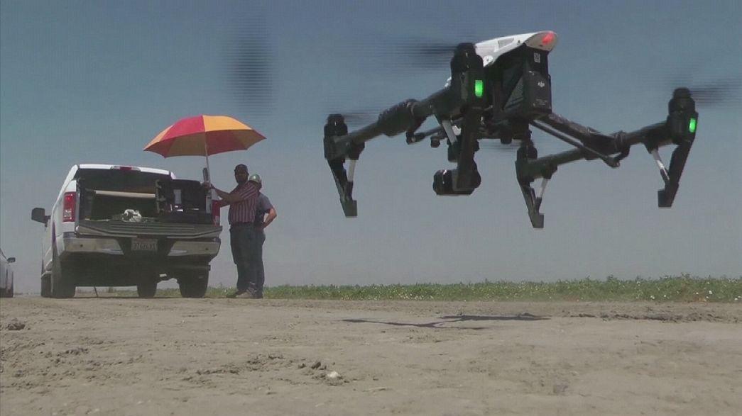 Tecnologia dos drones aplicada à poupança de água na Califórnia