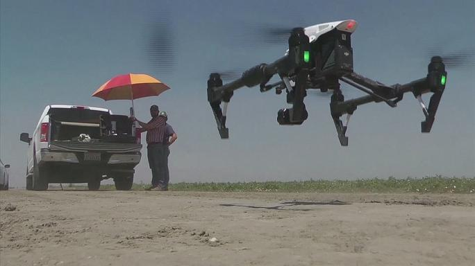 Kaliforniya'da İHA'lar kuraklığa karşı çalışıyor