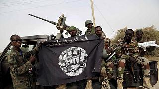Niger: 5 soldiers, 30 terrorists killed following Boko Haram attack