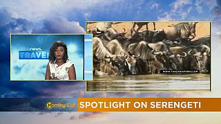 Spotlight on Serengeti [Travel on The Morning Call]