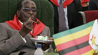 EU MPs condemn Mugabe's attack on judiciary, want all political prisoners released