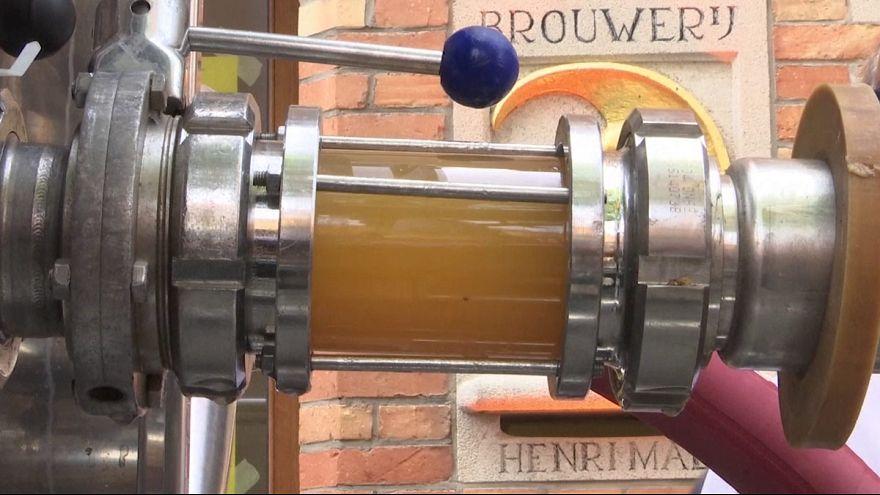 Brujas inaugura un sistema de alcantarillado por el que exportar cerveza