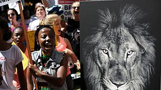 África do Sul: Conferência sobre espécies selvagens