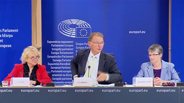 MEPs urge whistleblowers to come forward
