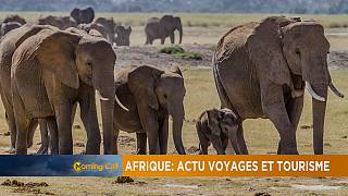 Africa: updates on travel and tourism [Travel on The Morning Call]