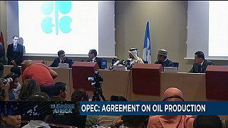 Opep : ''accord historique'' entre les pays producteurs de pétrole à Alger