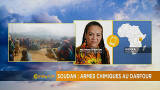 Sudan denies use of chemical weapons [The Morning Call]