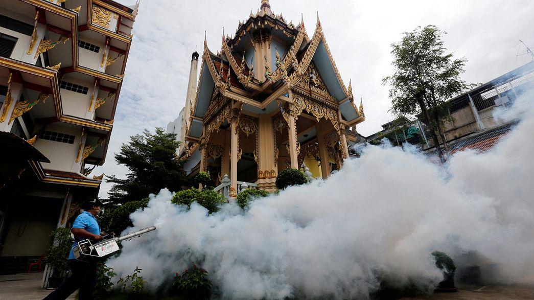 Tailândia confirma casos de microcefalia associados ao Zika