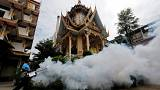 Thailand confirms first Zika-related microcephaly cases