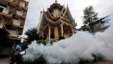 Tailandia registra los primeros casos de microcefalia por zika en el Sudeste Asiático