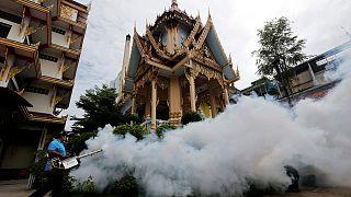 В Таиланде отмечены первые случаи микроцефалии из-за Зики
