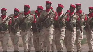 Chad, Niger forces kill 123 Boko Haram militants in a crackdown