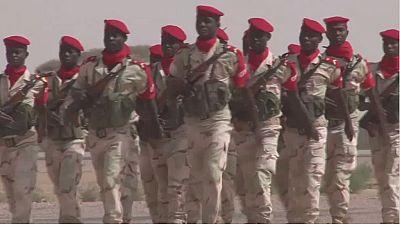 Des membres de Boko Haram tués dans des opérations coinjointes entre le Tchad et le niger