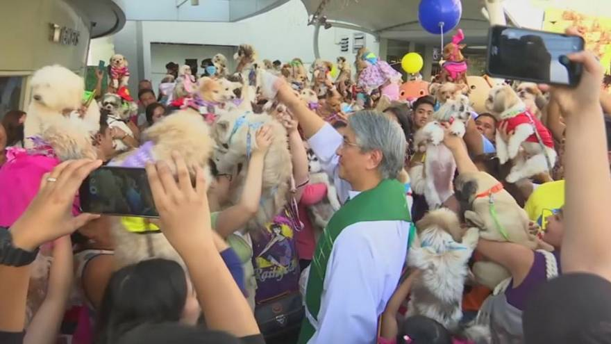 Owners have their pets blessed in Manila