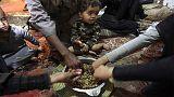 سوءتغذیه کودکان در ایران و راه کارها