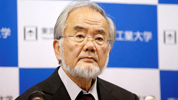 Medizin-Nobelpreis geht an Japaner Yoshinori Ohsumi