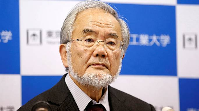Le Nobel de médecine attribué au Japonais Yoshinori Ohsumi