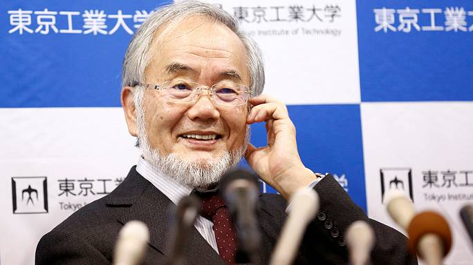 Нобелевская премия по медицине присуждена японскому исследователю аутофагии