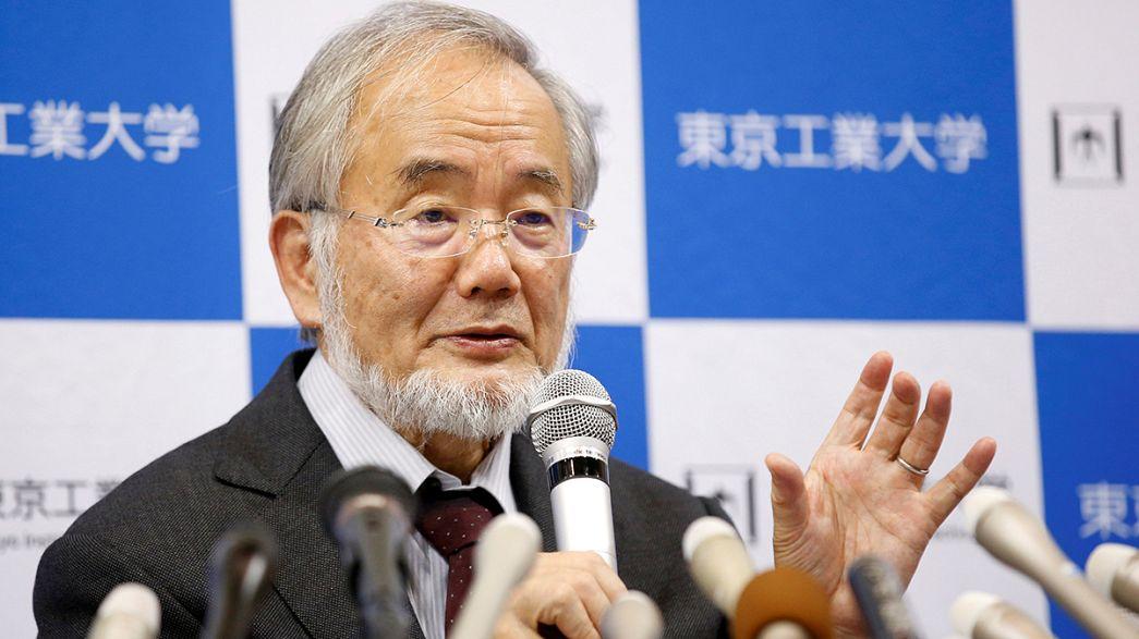 Yoshinori Ohsumi consigue el Nobel de Medicina