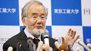 Japán sejtbiológusé az orvosi Nobel-díj