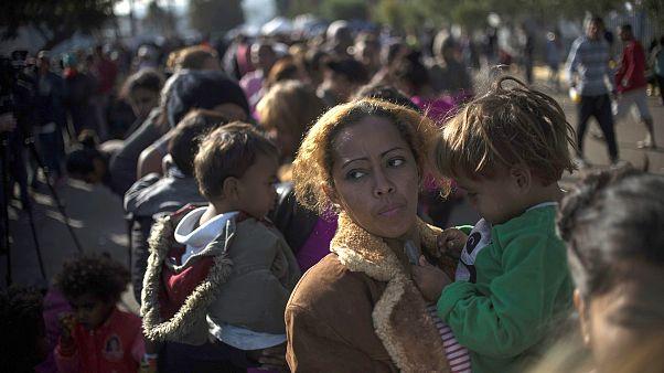 Image: Migrants