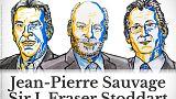 Nobel per la chimica 2016:Jean-Pierre Sauvage, J. Fraser Stoddart e Bernard L. Feringa