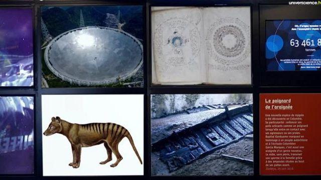 Voynich, le manuscrit de l'étrange