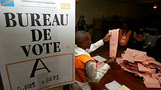 Int'l community has contributed $0 towards DRC polls - Ambassador