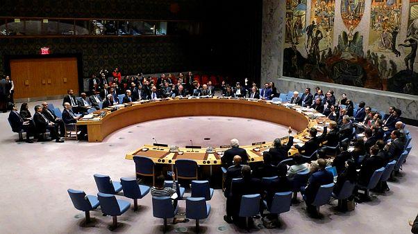 بمباران و جنگ در سوریه، مخالفت و بن بست در شورای امنیت