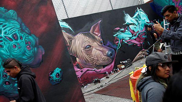 Meksiko City'de grafiti festivali