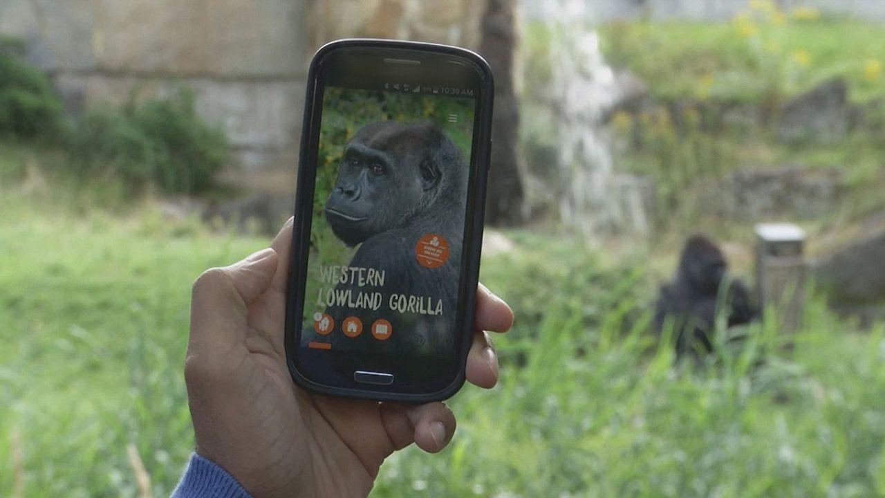 تطبيق جديد يستخدم تقنية المنارة في حديقة الحيوانات في برلين