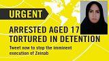 عفو بینالملل خواستار ممانعت از اجرای حکم قصاص زینب سکانوند شد