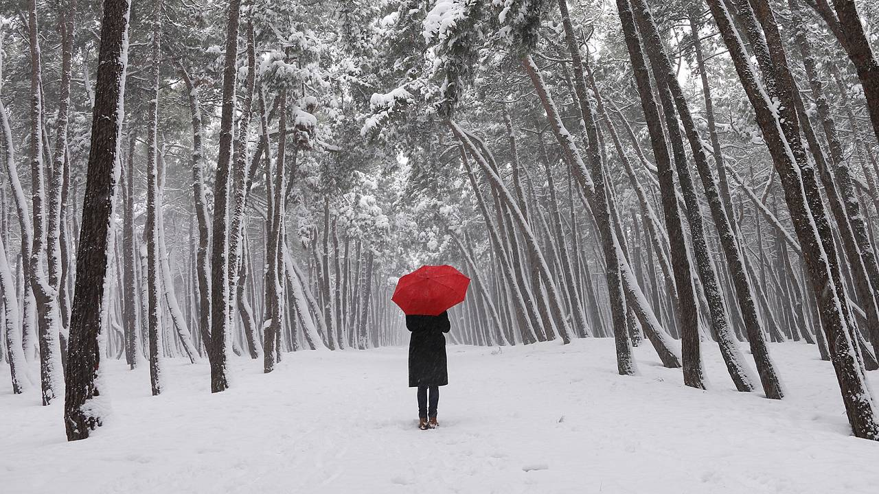 winter walk, winter, snow, red umbrella, seasonal affective disorder, SAD,