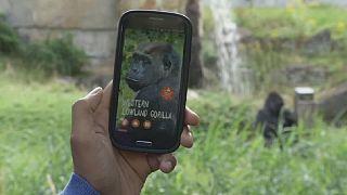 La technologie balise dans le zoo de Berlin