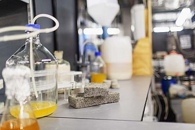 These so-called bio-bricks were created from human urine.