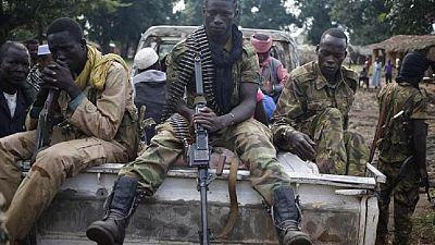 Centrafrique : des ex-rebelles Seleka déposent les armes