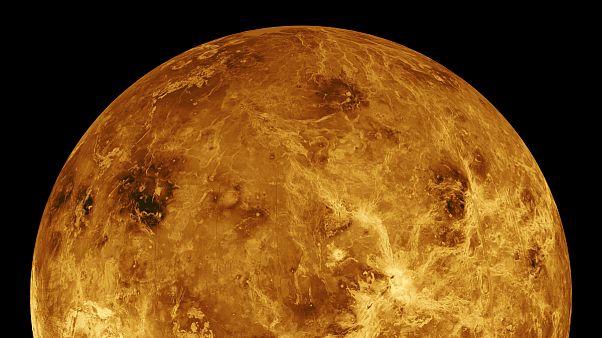 Vénusz: lehetett-e az élet bölcsője?