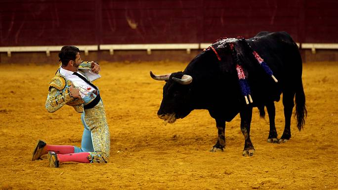 Bullfighting back in Catalonia