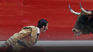 Tribunal Constitucional autoriza touradas na Catalunha