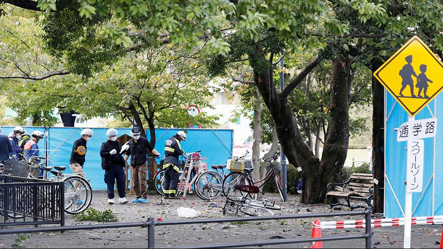 Japanese pensioner injures three in suicide blast