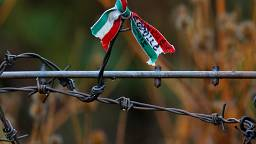 Sixty years on: is Hungary forgetting its own refugee crisis?