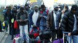 Кале: кто остаётся в «Джунглях»
