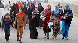 Ирак: десятки семей прибыли из Мосула в лагерь беженцев