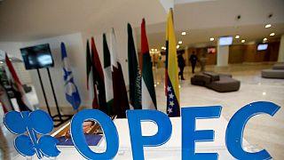 OPEP : désaccord sur le niveau de la production du brut