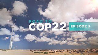 En route vers la Cop 22 : miser sur les énergies renouvelables