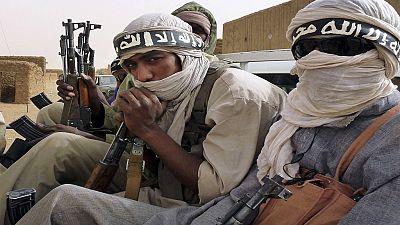 Mali : cessez-le-feu unilatéral d'Ansar Dine