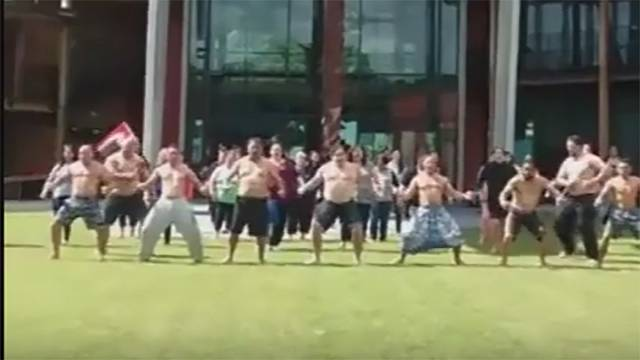 Watch: Haka held to support Dakota pipeline protesters